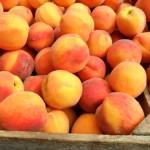 Farm Stand Peaches